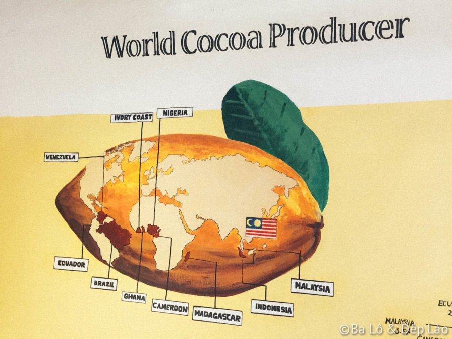 Chocolate Museum giới thiệu  lịch sử hình thành và quy trình sản xuất socola