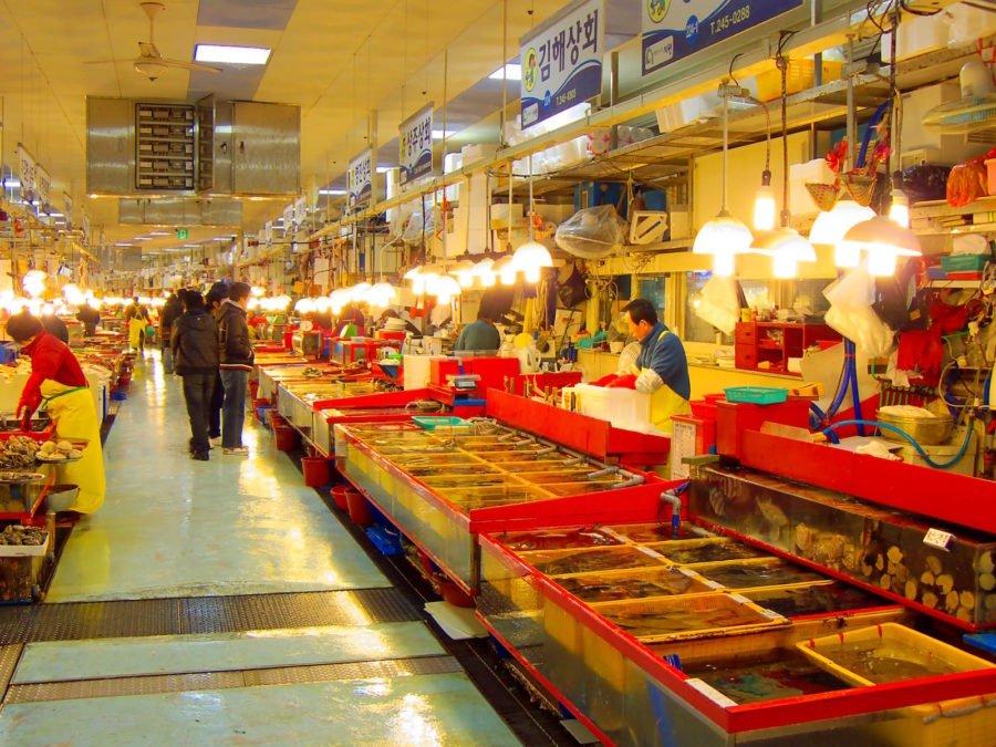 Jagalchi là chợ cá và hải sản lớn nhất Hàn Quốc