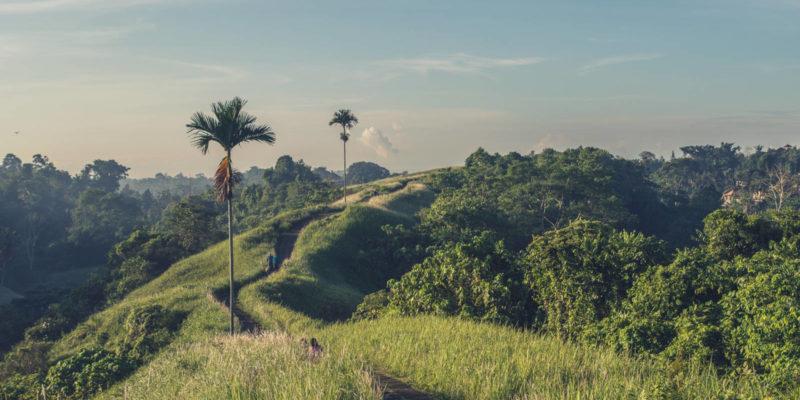 Ẩm thực Bali – Thiên đường ẩm thực đầy sắc màu