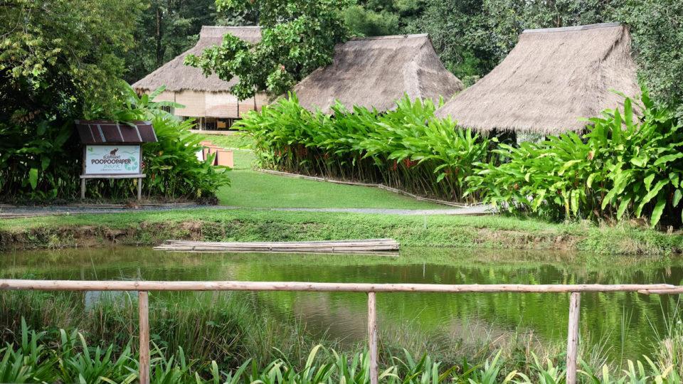 Du lịch Chiang Mai – Độc đáo với công viên giấy từ phân voi POOPOO Paper Park